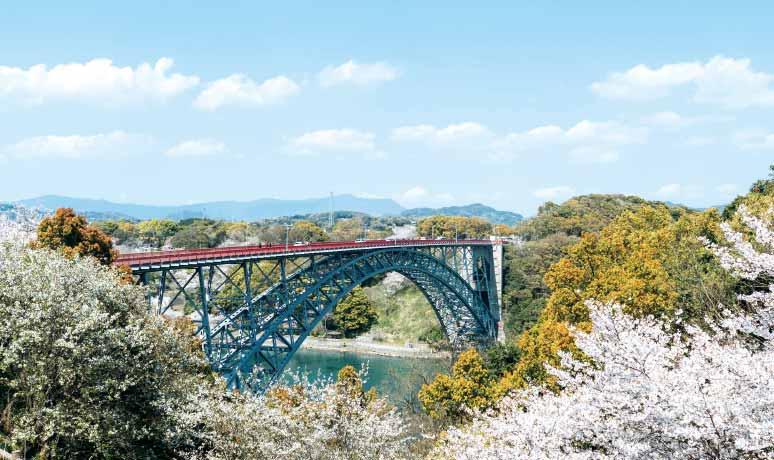 西海橋公園の桜(西海市)