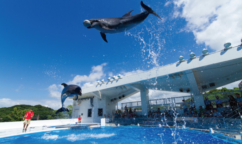 九十九島珍珠海洋遊覽區(佐世保市)